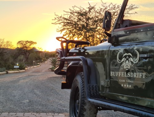Getting ready for your private game reserve experience